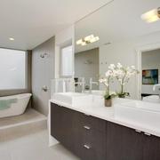 现代简约效果套图主卫浴柜