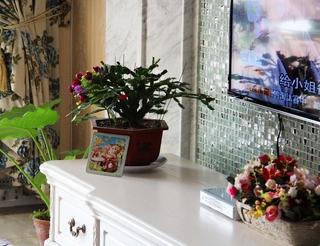 简欧客厅花艺装饰图 舒适自然家居