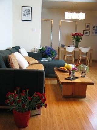 现代简约两居室住宅欣赏