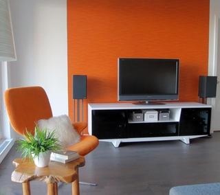 现代住宅效果图客厅电视柜