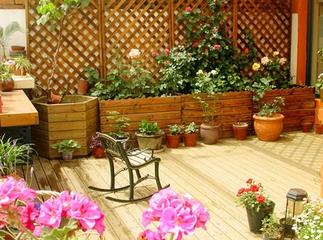 冬季如何养护庭院花园