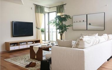 田园风小户型住宅欣赏客厅陈设