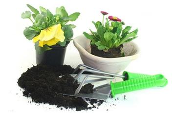 阳台种菜培养土的种类及配置方法