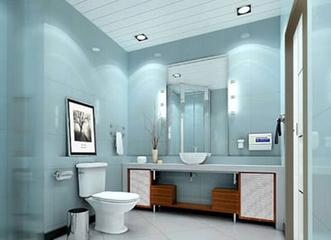 墙排式马桶 大唱卫浴洁具的时尚风
