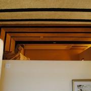 现代简约样板间室内门卧室