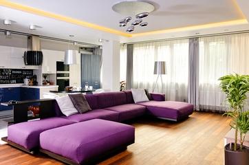简约紫色美家欣赏客厅设计