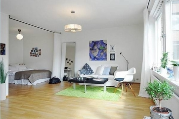 白色北欧一居室住宅欣赏