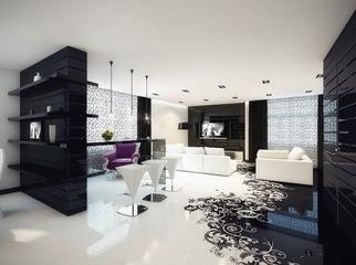 黑白现代奢华住宅欣赏客厅陈设