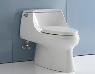 卫浴设备:马桶的种类及特点