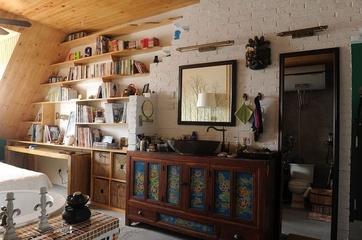 简洁一居室小豪宅欣赏客厅书架