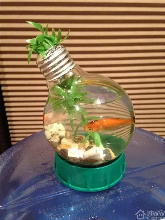 废品利用手工制作鱼缸