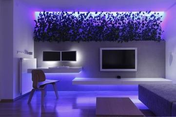 摩登时髦现代一居欣赏客厅效果