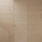 黑白木现代别墅欣赏室内门