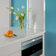 现代小户型设计效果图厨房局部